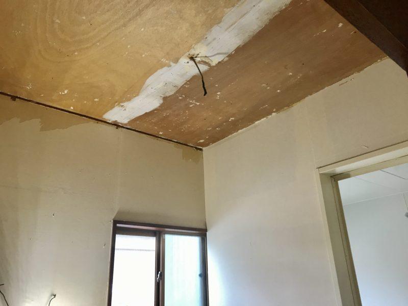 モイス 洗面 天井